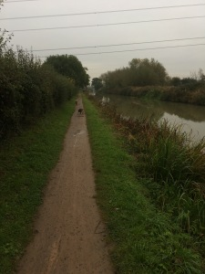 Up the canal