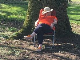 Dozing and Dreaming in Savernake Forest